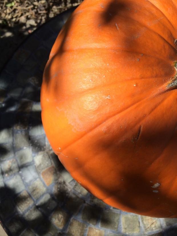 Pumpkin0